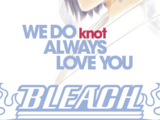 Bleach: WE DO knot ALWAYS LOVE YOU