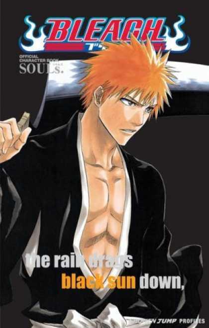 Bleach: Official Character Book SOULs