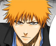 214Ichigo profile