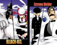 463. Extreme Divider