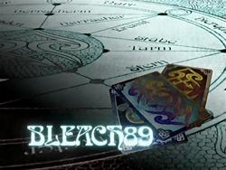 Bleach 89.png