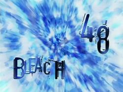 Bleach 48.png