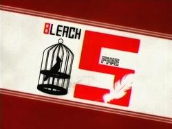 Bleach 5.png