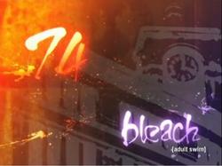 Bleach 74.png