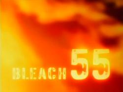 Bleach 55.png