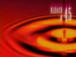 Bleach 45.png