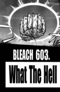 Chapter603