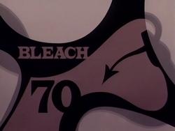 Bleach 70.png