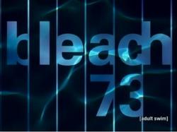 Bleach 73.png