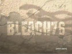 Bleach 76.png