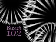 Bleach 102