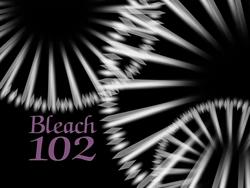 Bleach 102.png