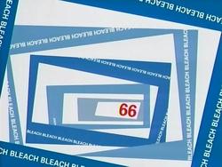 Bleach 66.png