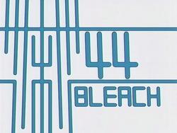 Bleach 44.png