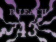 Bleach 43