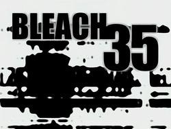Bleach 35.png