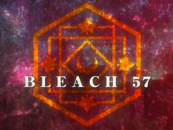 Bleach 57.png