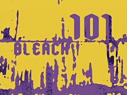 Bleach 101.png