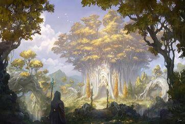 Sylvan elf lore 1.jpg