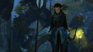 Sylvan elf beginnings 2.png