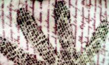 Handprinttat.png