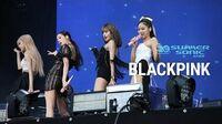 BLACKPINK - Kill This Love (SUMMER SONIC2019 Tokyo - Marine Day 3)