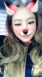 Jennie as a cat