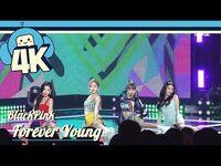 -4K & Focus Cam- Blackpink - Forever Young @Show! Music Core 20180804 블랙핑크 - 포에버 영