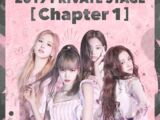 BLACKPINK 2019 Private Stage (Chapter 1)