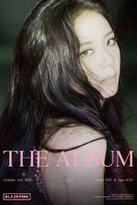 The Album Jisoo Teaser Poster 2