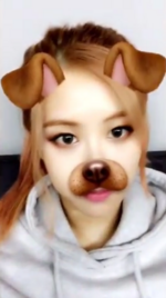 Rosé using the dog filter