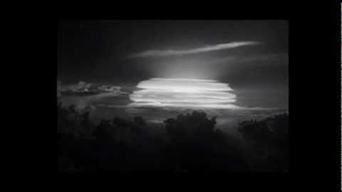 The Nuclear YOLOcaust