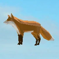 Fox Hat.png