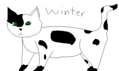Winter Warrior Cats OC art request