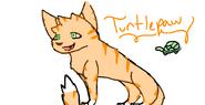 Turtlepawbylilykit
