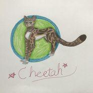 Cheetahspark-by-pebblepaw