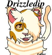 DrizzlePAW