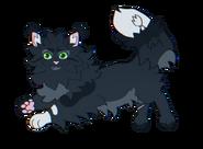 Darkwing by kat