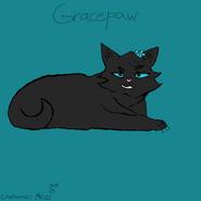 Gracey