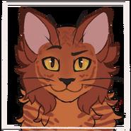 Updated Picrew