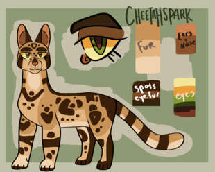 Cheetahspark copy