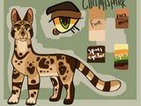 Cheetahspark