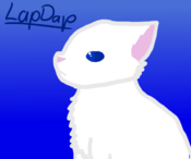 LapDap!