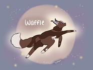 Waffle.byslatey