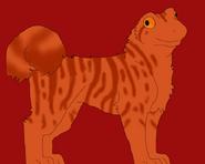 Reddrog