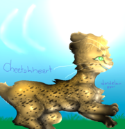 Cheetahheart-by-Dandelionpaw