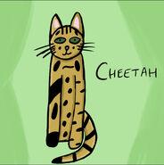 Cheetah-by-raven