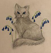 Bluebell by rainie
