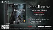 Promo bloodborne