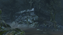 Forbidden Woods №2